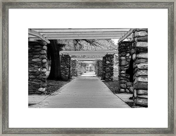 Ambuscade Along The Trellis Path Framed Print