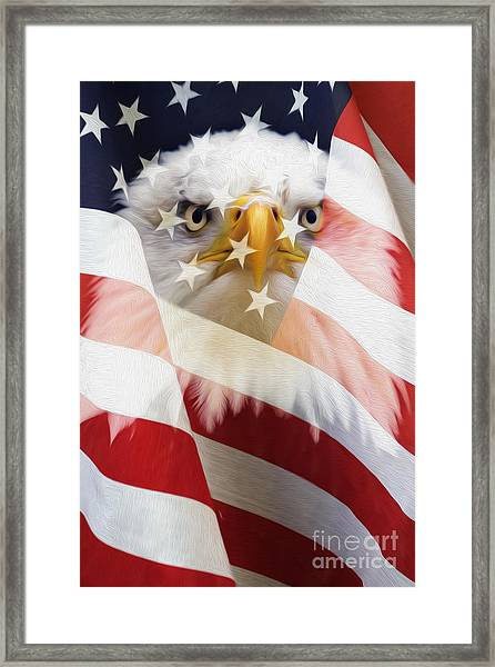 American Flag And Bald Eagle Montage Framed Print