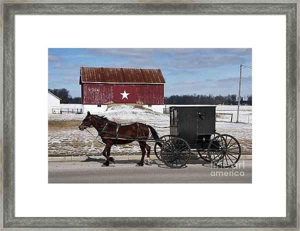 Amish Buggy And The Star Barn Framed Print