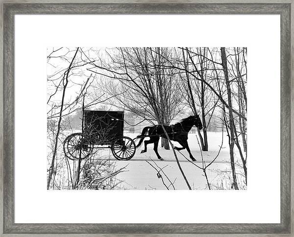 Amish Buggy Revised Framed Print