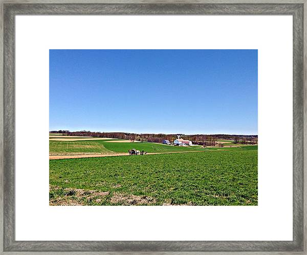 Amish Farmer Framed Print