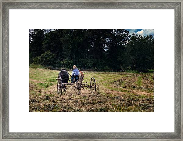 Amish Farming Framed Print