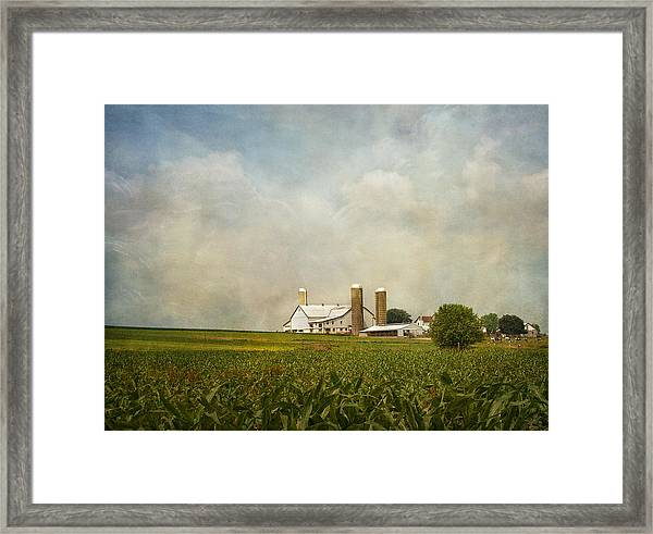 Amish Farmland Framed Print
