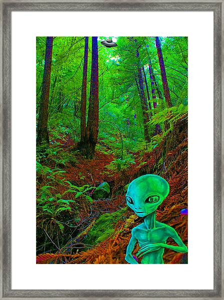 An Alien In A Cosmic Forest Of Time Framed Print