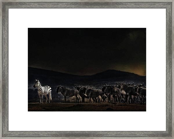 An Evening In Kenya Framed Print