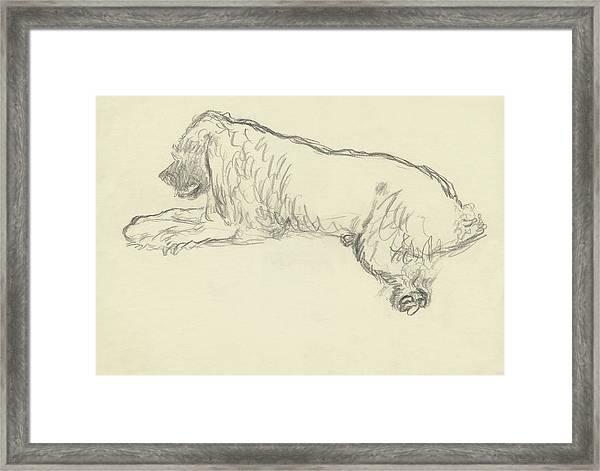 An Illustration Of A Dog Framed Print