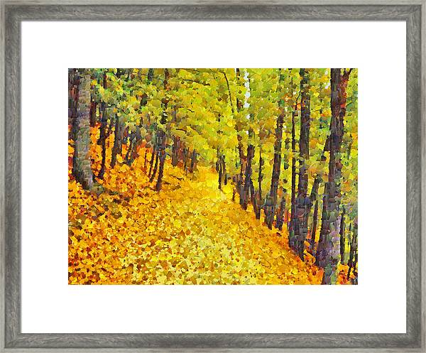 An October Walk In The Woods. 2 Framed Print