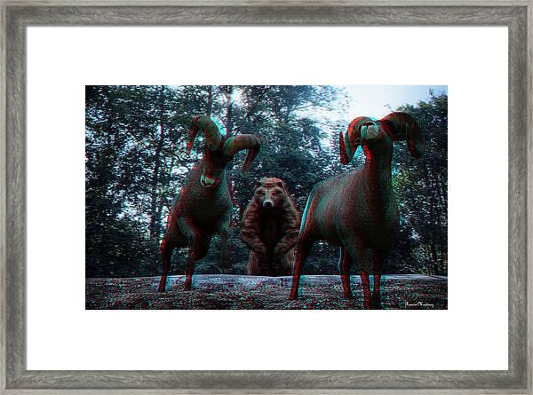 Anaglyph Wild Animals Framed Print