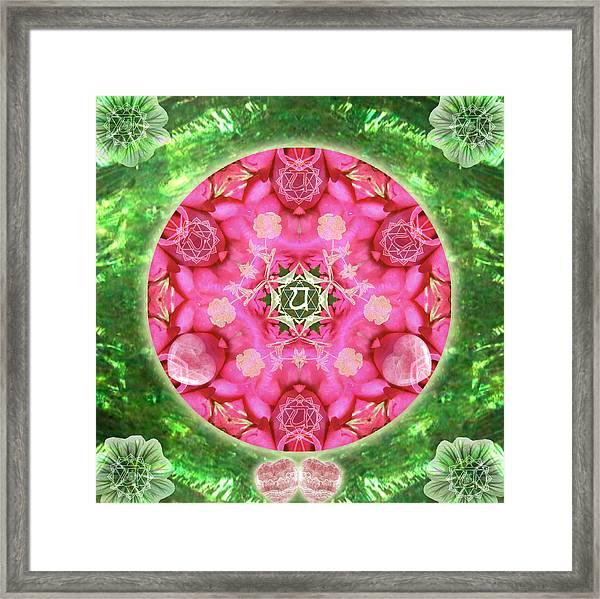 Anahata Rose Framed Print