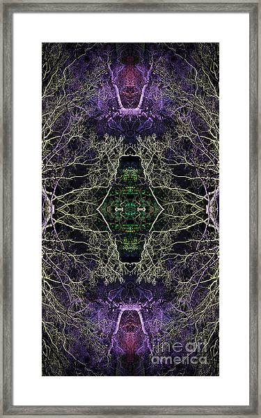 Anahata Framed Print by Tim Gainey