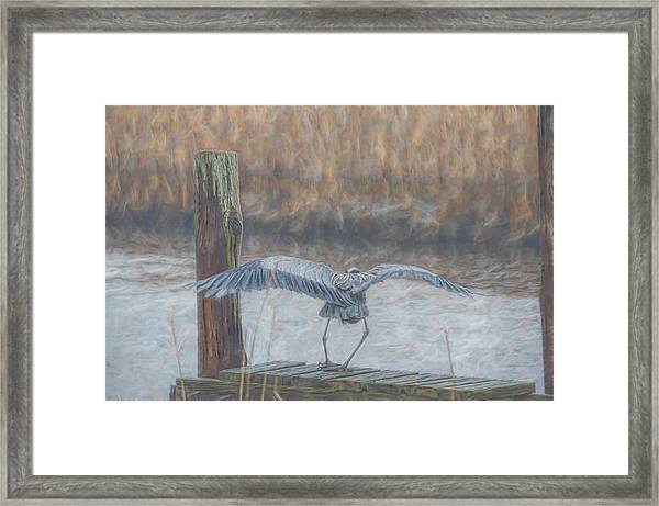Framed Print featuring the photograph And A One And A Two by Beth Sawickie