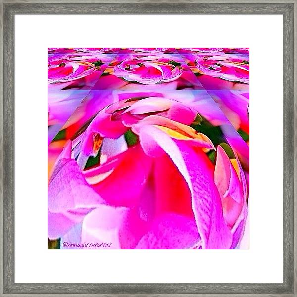 And Now For Some Brights Framed Print
