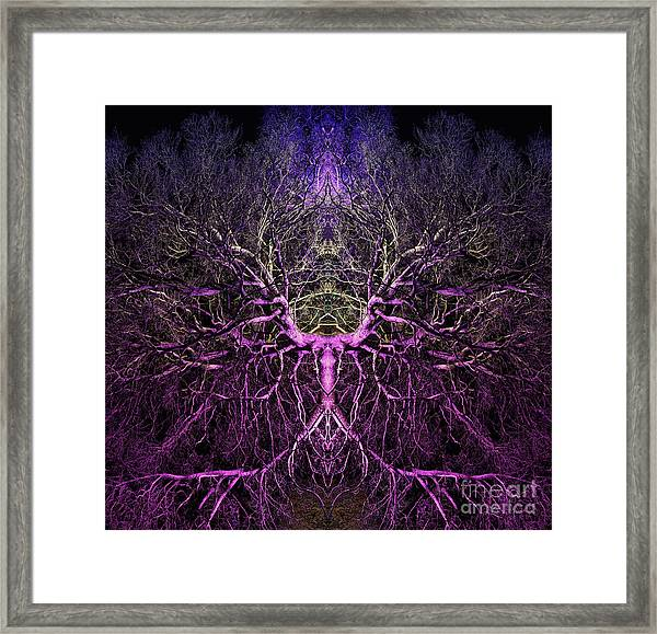 Anima Framed Print