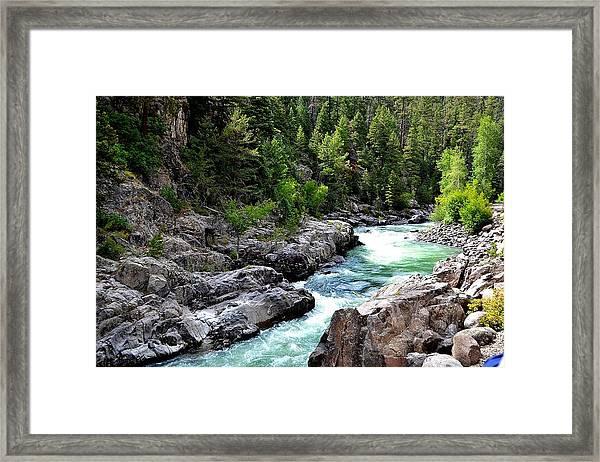 Animas River Framed Print