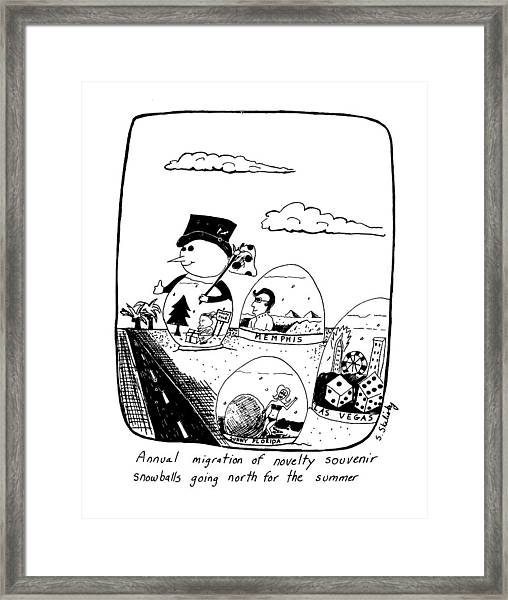 Annual Migration Of Novelty Souvenir Snowballs Framed Print