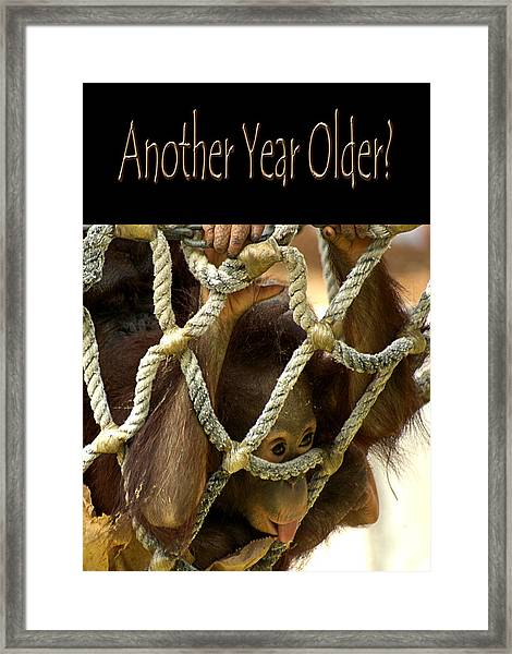 Another Year Older Framed Print