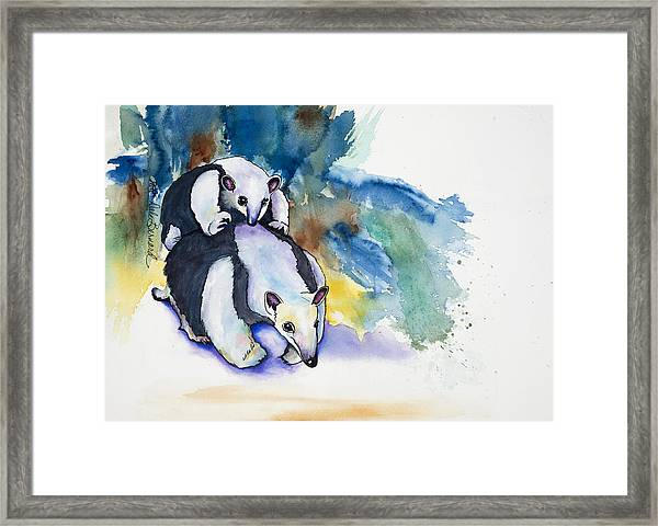 Anteater With Baby Framed Print