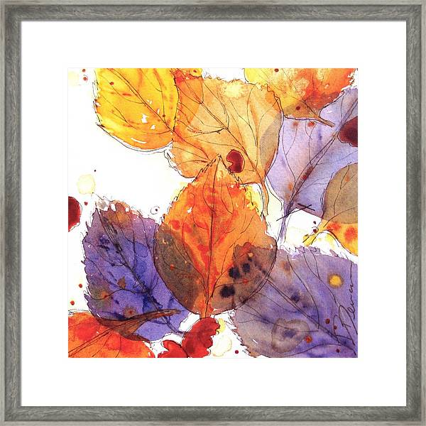 Anticipating Autumn Framed Print