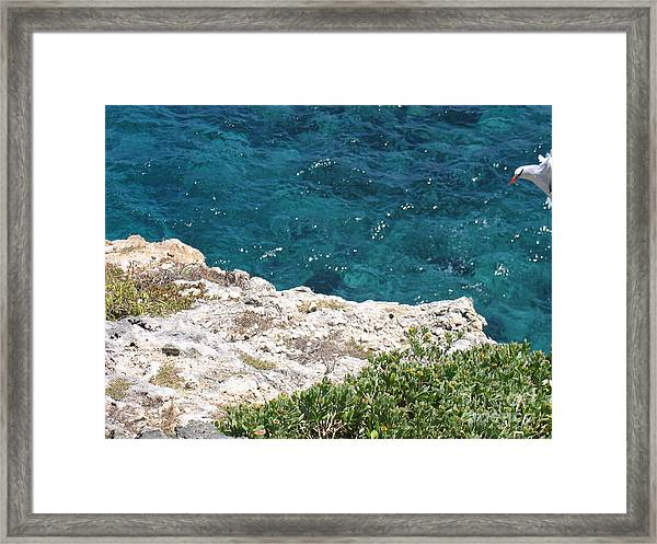Antigua - Flight Framed Print