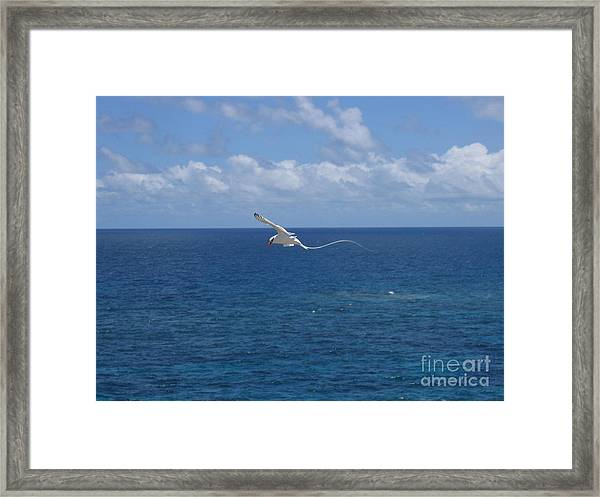 Antigua - In Flight Framed Print