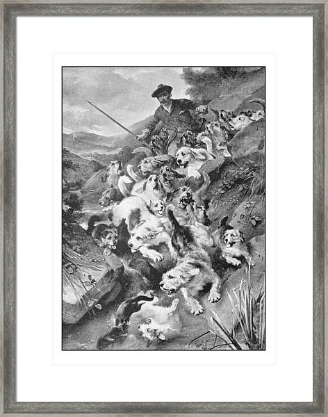 Antique Photo Of Paintings: Bolting The Otter Framed Print by Ilbusca