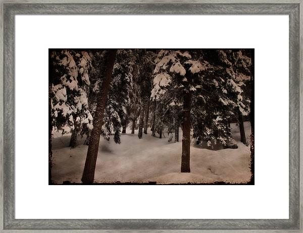 Antique Woodscape Framed Print