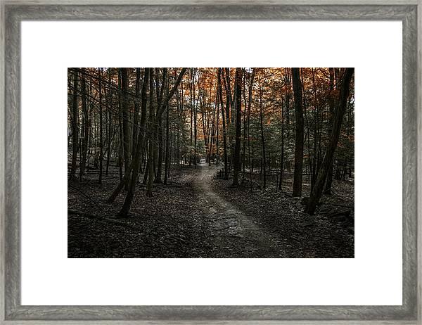 Appalachian Trail Framed Print