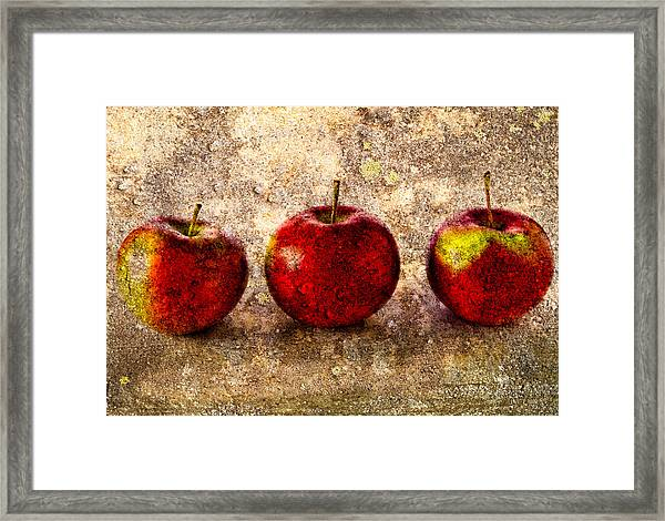 Apple Framed Print