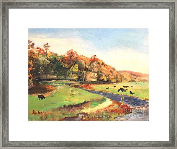 Apple River Valley Il. Autumn Framed Print
