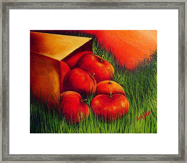 Apples At Sunset Framed Print