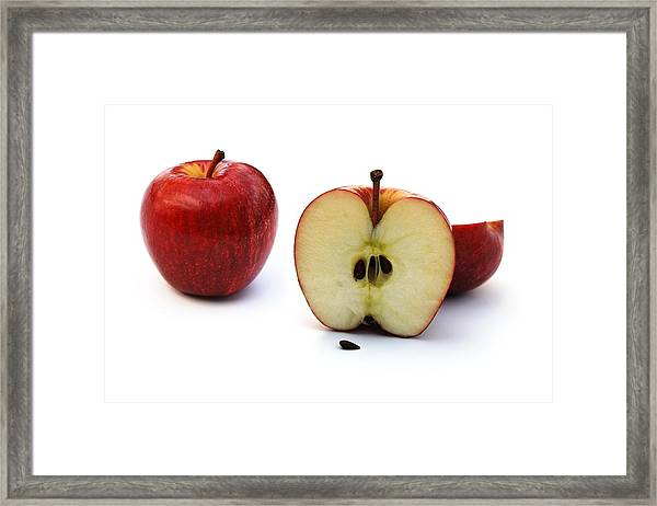 Apples Still Life Framed Print