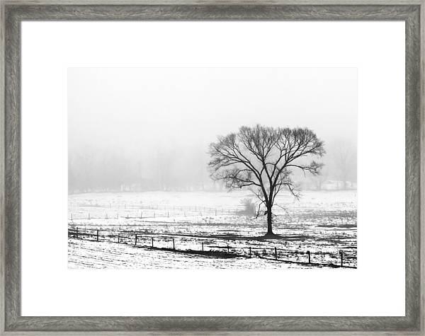Approaching Fog Framed Print