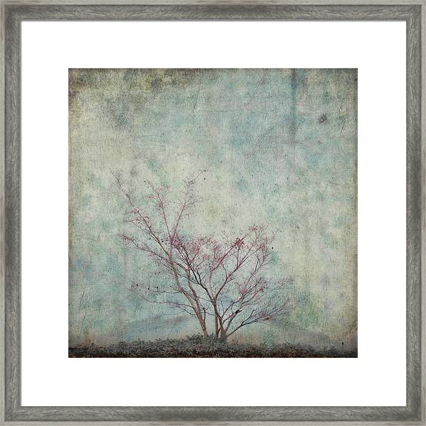 Approaching Spring Framed Print