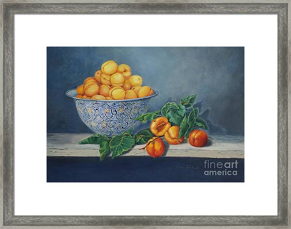 Apricots And Peaches Framed Print