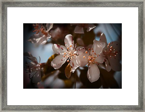 April In Colors Framed Print