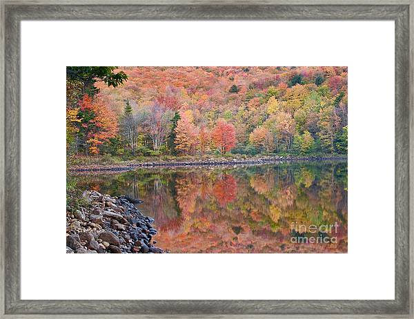 Aquarelle Framed Print