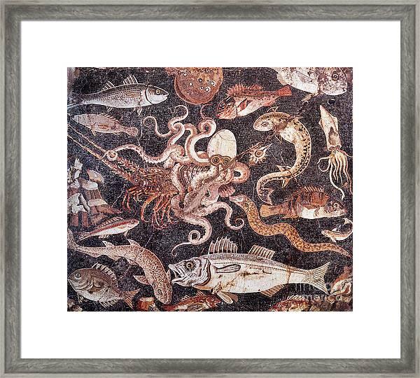 Aquatic Mosaic Framed Print