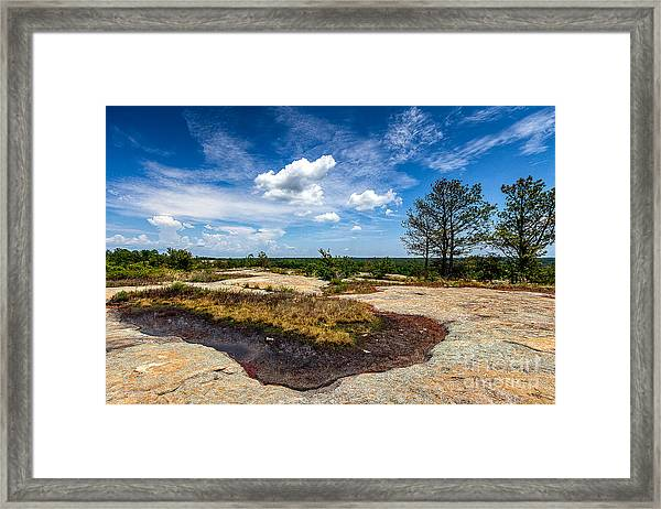 Arabia Mountain Preserve Framed Print