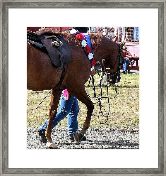 Arabian Heading To The Barn  Framed Print by Olde Time  Mercantile