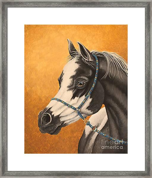 Arabian Paint Framed Print