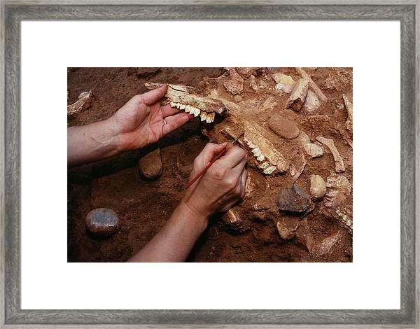 Archaeological Excavation Framed Print