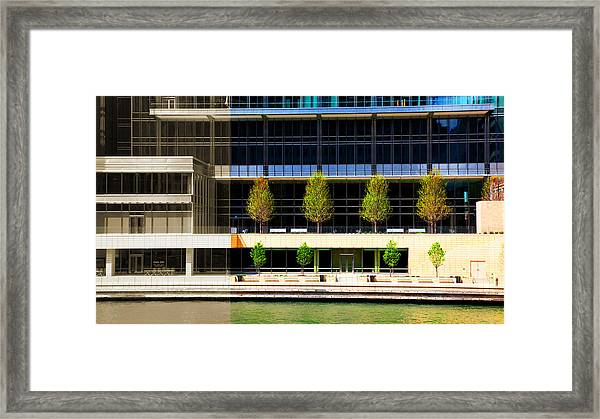 Architectural Pattern Trees Framed Print