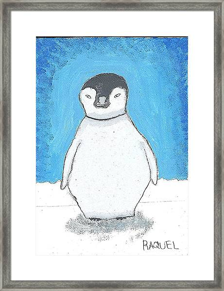 Arctic Penguin Framed Print by Fred Hanna