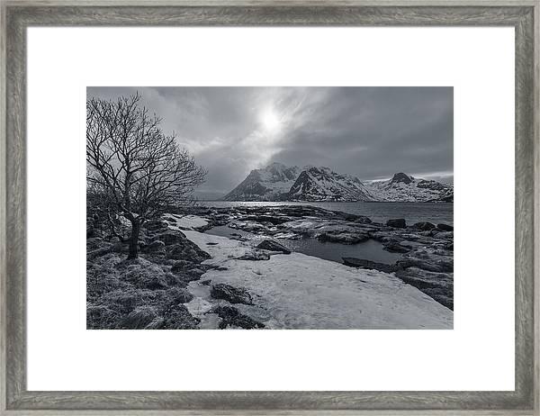 Arctic Spring  Framed Print