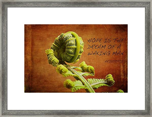 Aristotle Quote Framed Print