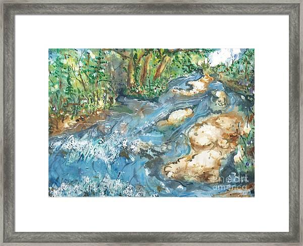 Arkansas Stream Framed Print