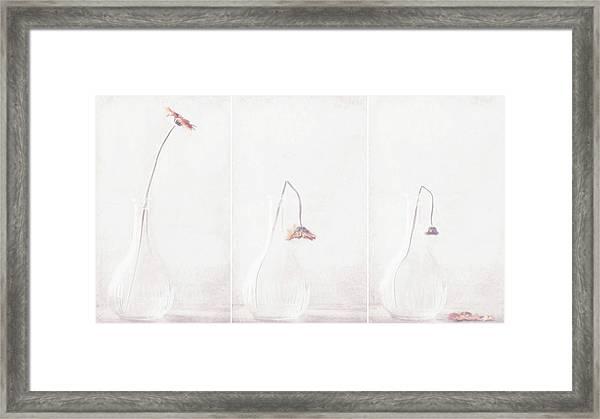 Ars Longa, Vita Brevis... Framed Print