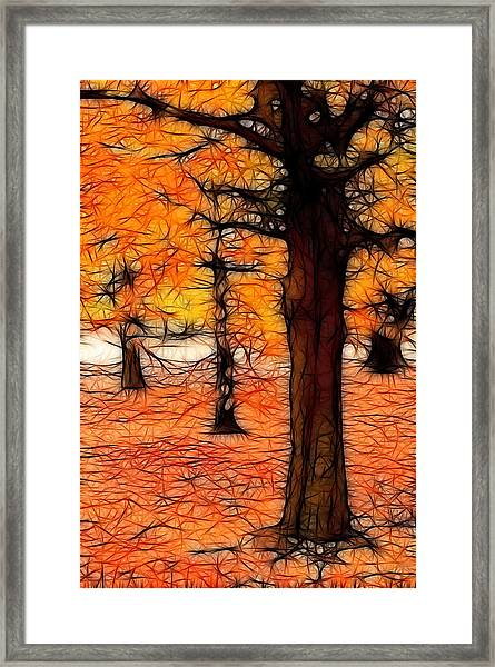 Artistic Fall Trees Framed Print