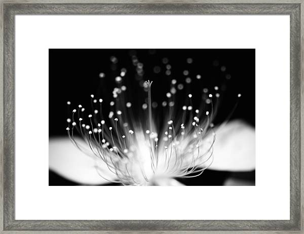 As Flame Framed Print