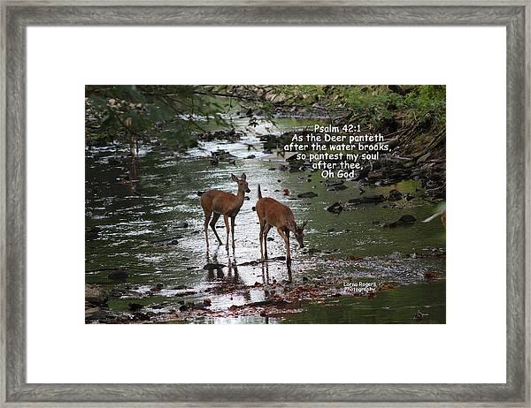 As The Deer Pants For Water Framed Print